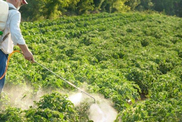 افزایش کیفیت صادرات محصولات کشاورزی با فناوری پلاسمای سرد