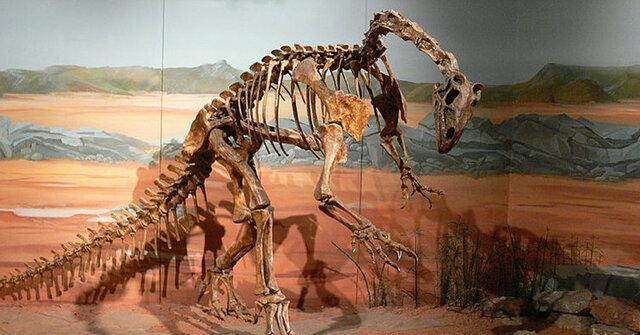 کشف اطلاعات بی سابقه با بازسازی مغز یکی از قدیمی ترین دایناسورهای تاریخ