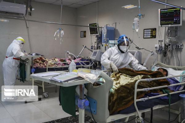 خبرنگاران مردانی: مرگ و میر کرونا اواسط اسفند افزایش می یابد