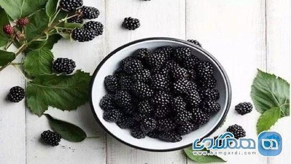 5 خوراکی سیاه رنگ که باید آنها را در رژیم غذایی خود بگنجانید
